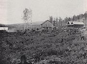A field of stumps surround the few buildings of the experiment station about 1909. Photo: Rasmuson Library
